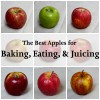 The Best Apples for Baking, Eating, & Juicing