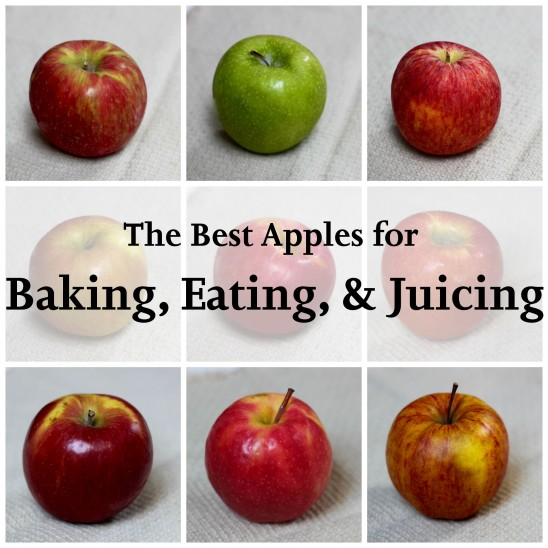 Apple Guide | Foodinary